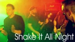 Shake it All Night